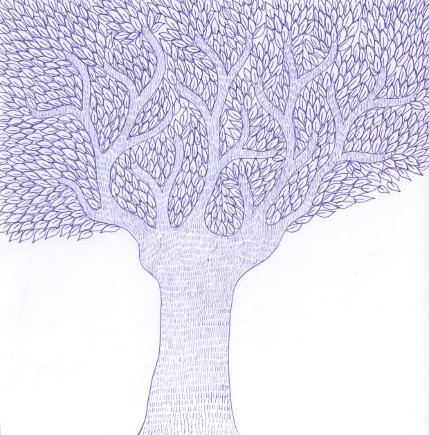 43-strom